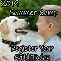 Kids & Kritters Summer Camp 2019